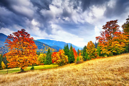 Multi-colored Carpathians