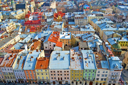 Lviv houses