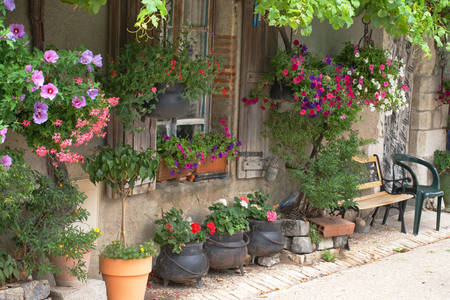House facade with flower pots