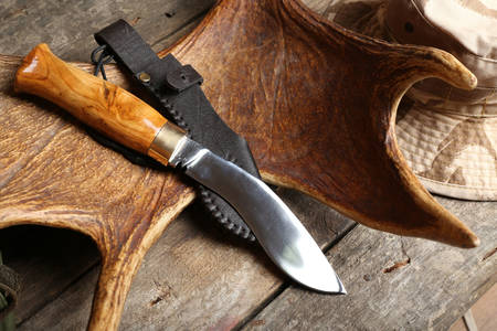 Hunting knife and trophy on wooden table