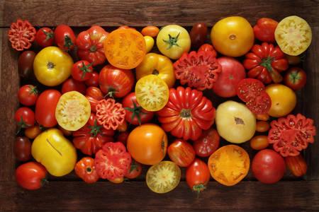 Diferentes variedades de tomates