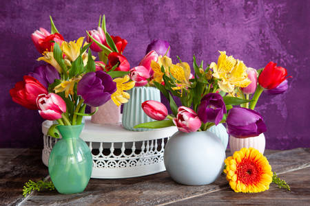 Tulips on a purple background