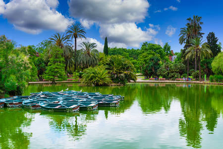Boats on the pond in Barcelona park