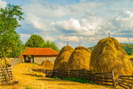 Hay supplies in the village