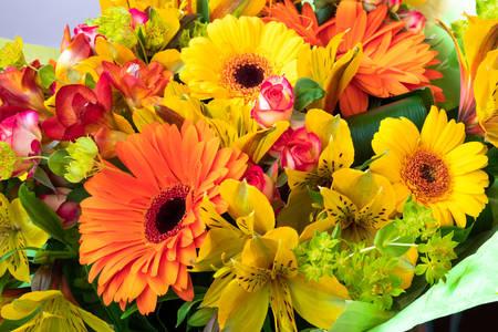 Bouquet de gerberas jaunes