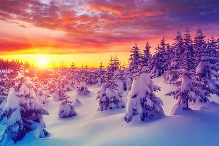 Pôr do sol de inverno nos Cárpatos