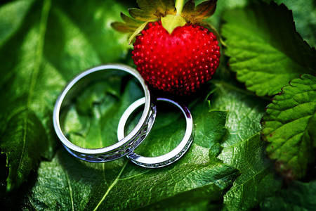 Wedding rings on green leaves