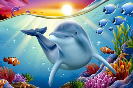 Delfin na koralnom grebenu