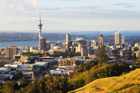 View from Mount Eden to the city of Auckland