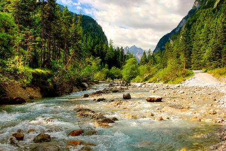 Natura austriacă
