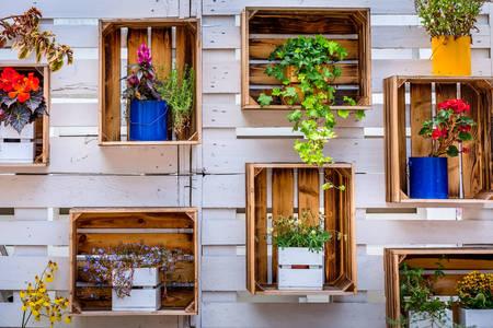 Bloemen in houten kisten