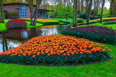 Kraljevski park cvijeća - Keukenhof