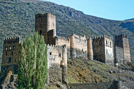 Fortaleza Khertvisi
