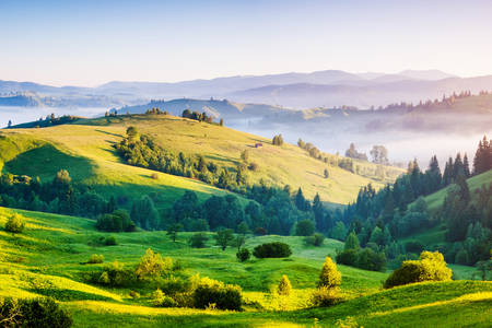 Morning in the Carpathians