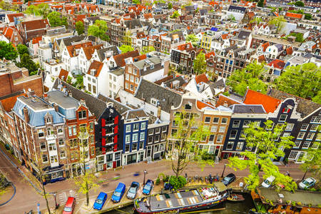 Roofs of Amsterdam