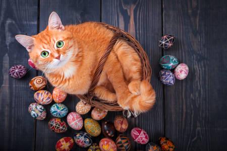 Chat dans un panier et oeufs de Pâques