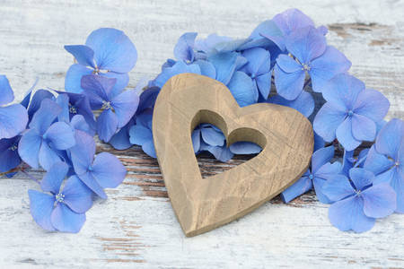 Wooden heart and hydrangea flowers
