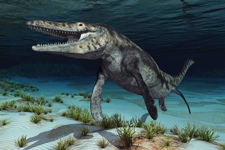 Mosasaurus at the bottom of the river