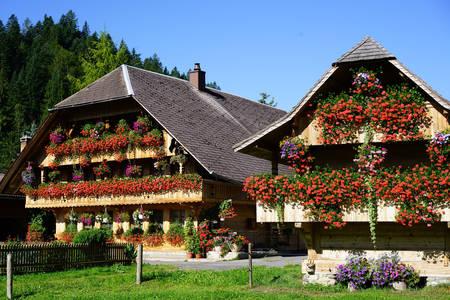 Bloemenhuizen