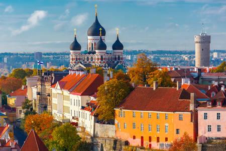 Alexander Nevsky Katedrali ve Long Herman Kulesi manzarası