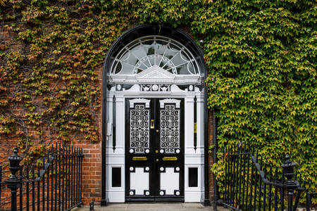 Portas georgianas na Fitzwilliam Square