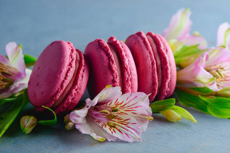 Macaroon on flowers
