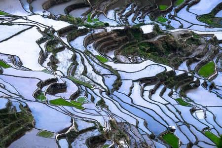 Оризови тераси с отражение на небето