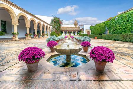 Дворецът на Виана