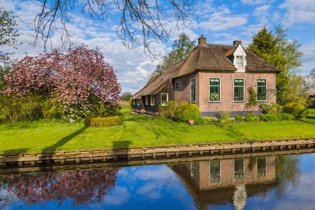 Село Гітхорн в Нідерландах