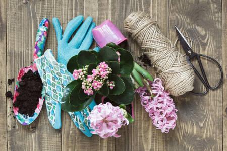 Градински инструменти и цветя