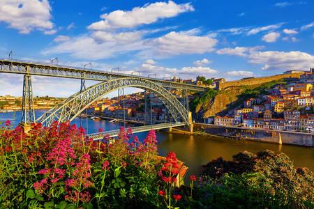 Изглед към моста Ponti di Don Luis I