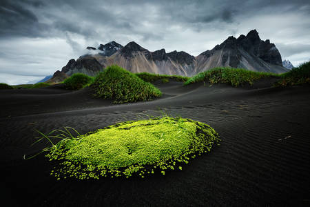 Black sand at Mount Vestrahorn