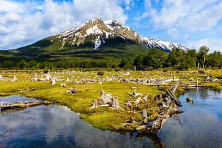 Parcul național Tierra del Fuego