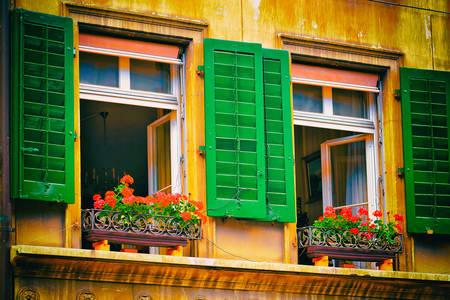 Ventanas con persianas verdes