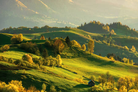 Dawn in the Carpathians