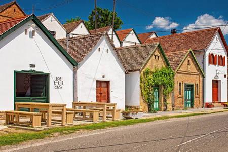 Wine houses in Villani