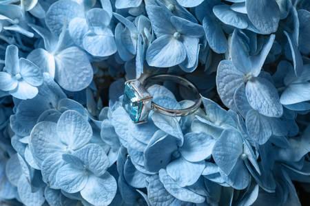 Ring with aquamarine on a blue hydrangea