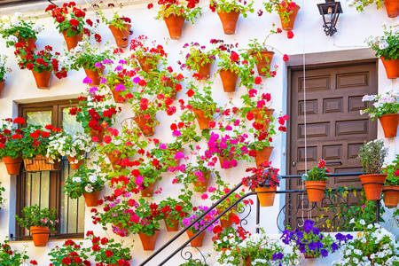 Facade of a house with flowers in Cordoba