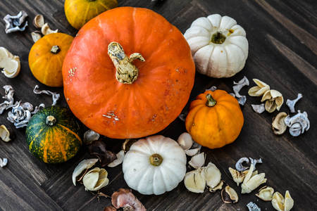 Pumpkins and dried flowers