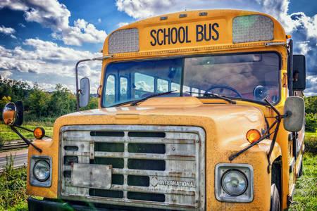 Amerikan okul otobüsü