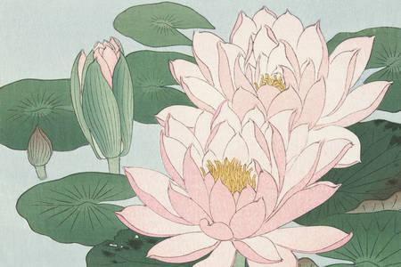 "Ohara Koson: ""Water Lilies"""