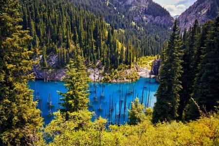 Lake Cain