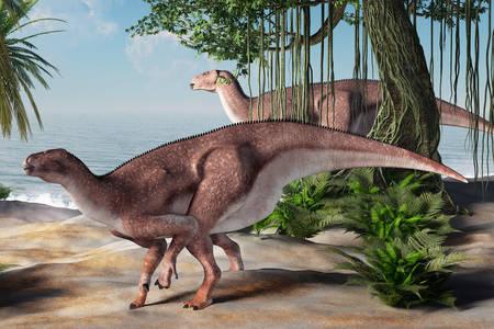 Pair of iguanodons