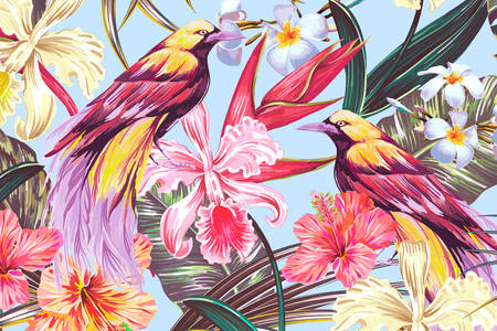 Illustration with birds of paradise