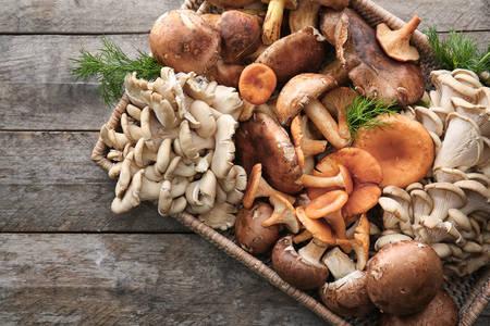 Gljive u pletenom plehu