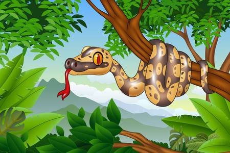 Boa constrictor on a tree