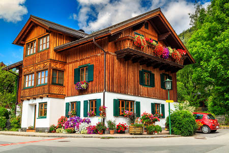 Alpine wooden house