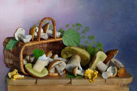 Лесные грибы на деревянном столе