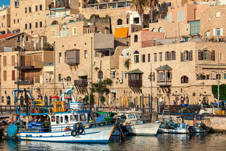 Fishing boats in the port of Jaffa