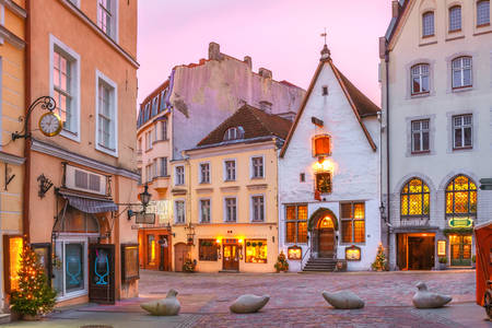 Dawn on the streets of Tallinn